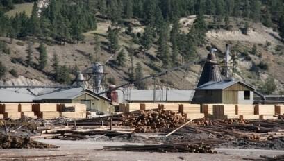 Babine Sawmill